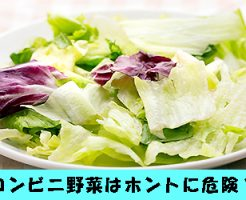 コンビニ 野菜