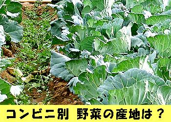 コンビニ野菜 産地