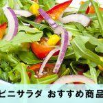 コンビニのサラダ、おすすめ商品5選!栄養豊富で美味しいのは?
